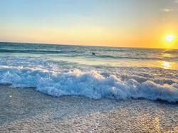 sarasota ocean
