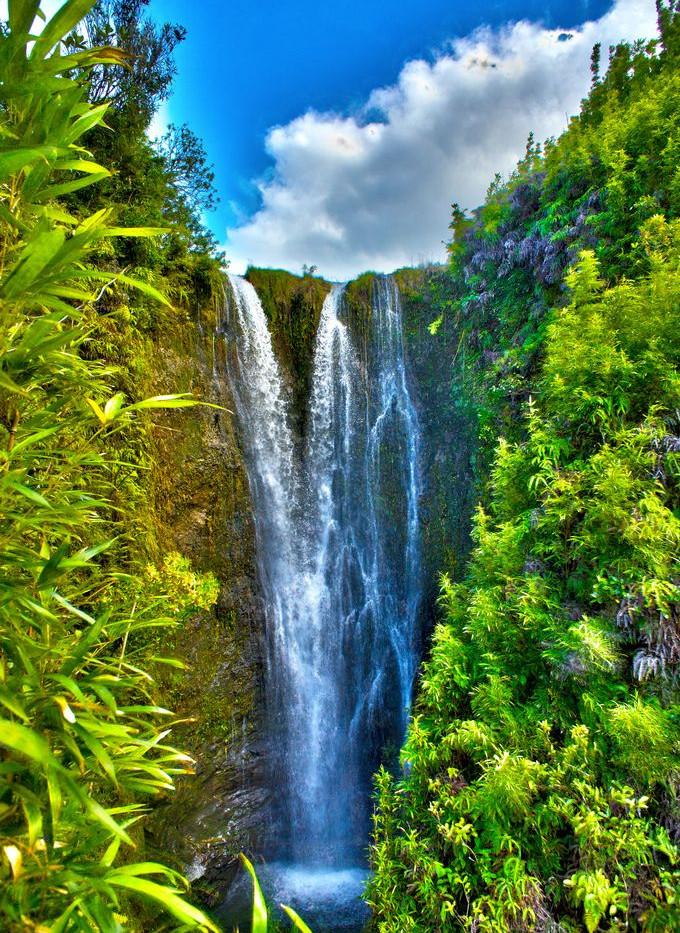 hawaii15_orig.jpg