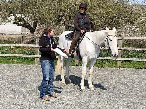 British Reining Western Coaching Certificate Workshop
