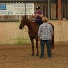 Pauline coaching