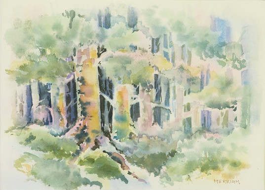 Enchanted Forest   watercolour