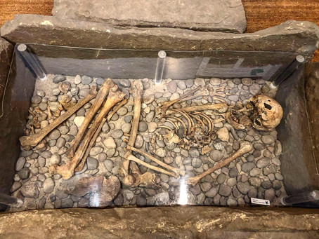 Discussion: Human Remains in Museums