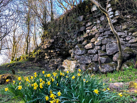 The Tales of Duchal Castle