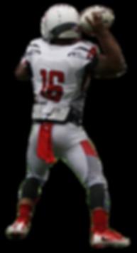 Hampton Roads Reapers Quarterback in action