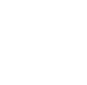 The 220 experience logo