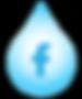 steam team facebook icon