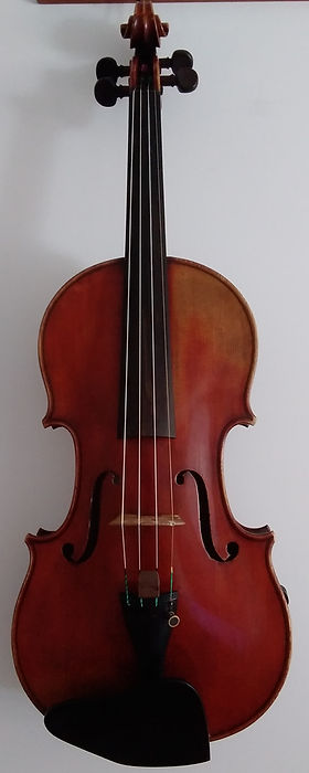 Violin picture cropped.jpg