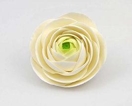 Ranunculus White 10cm