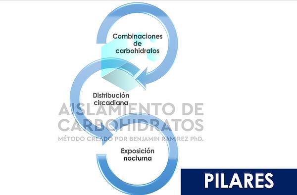 PILARES DE EL METODO MAC.png