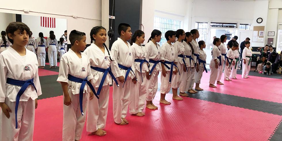 Green/Blue Belt Promotion Test