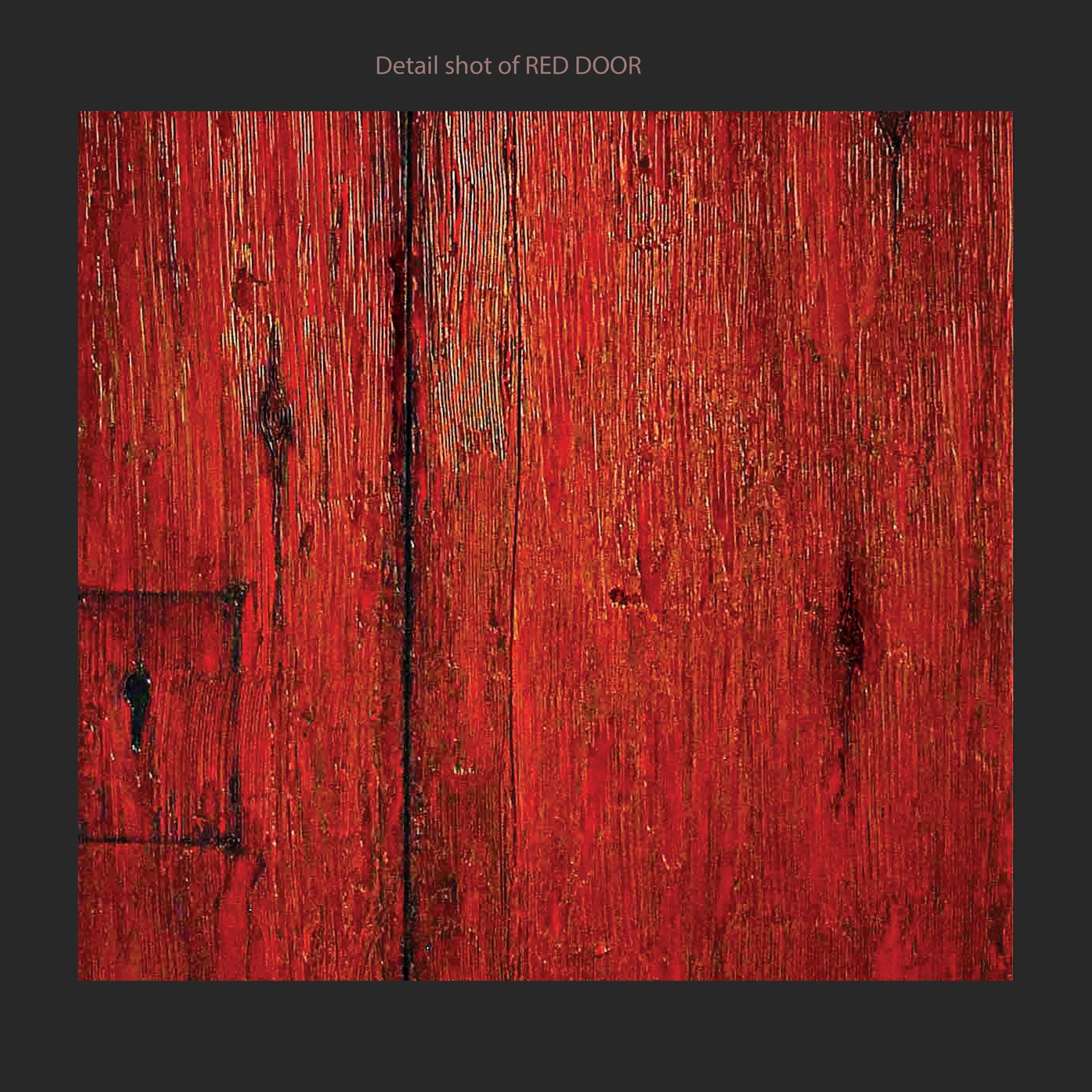 Red Door Detail