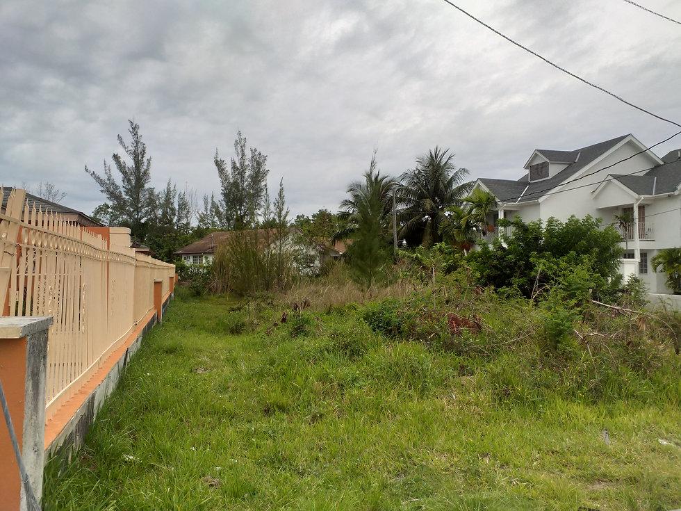 Tropical Gardens Lot 2