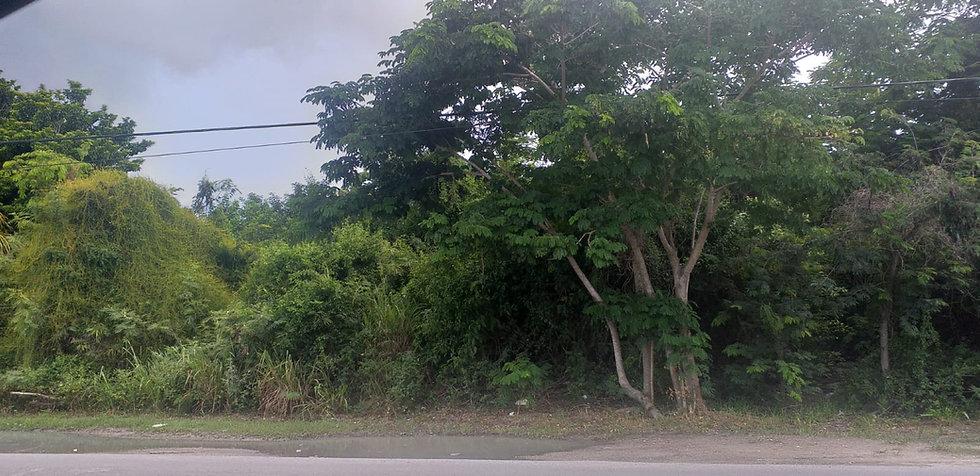 Cowpen Road