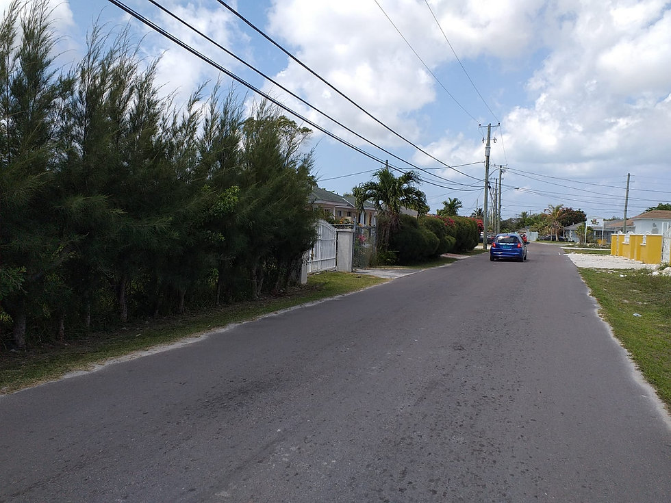 Palm Breeze Drive
