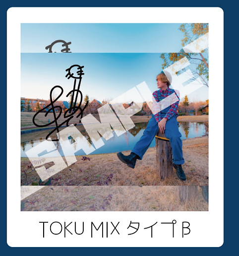 TOKU-MIXタイプB.png