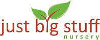 Just Big Stuff LogoFINAL Vector-1.jpg