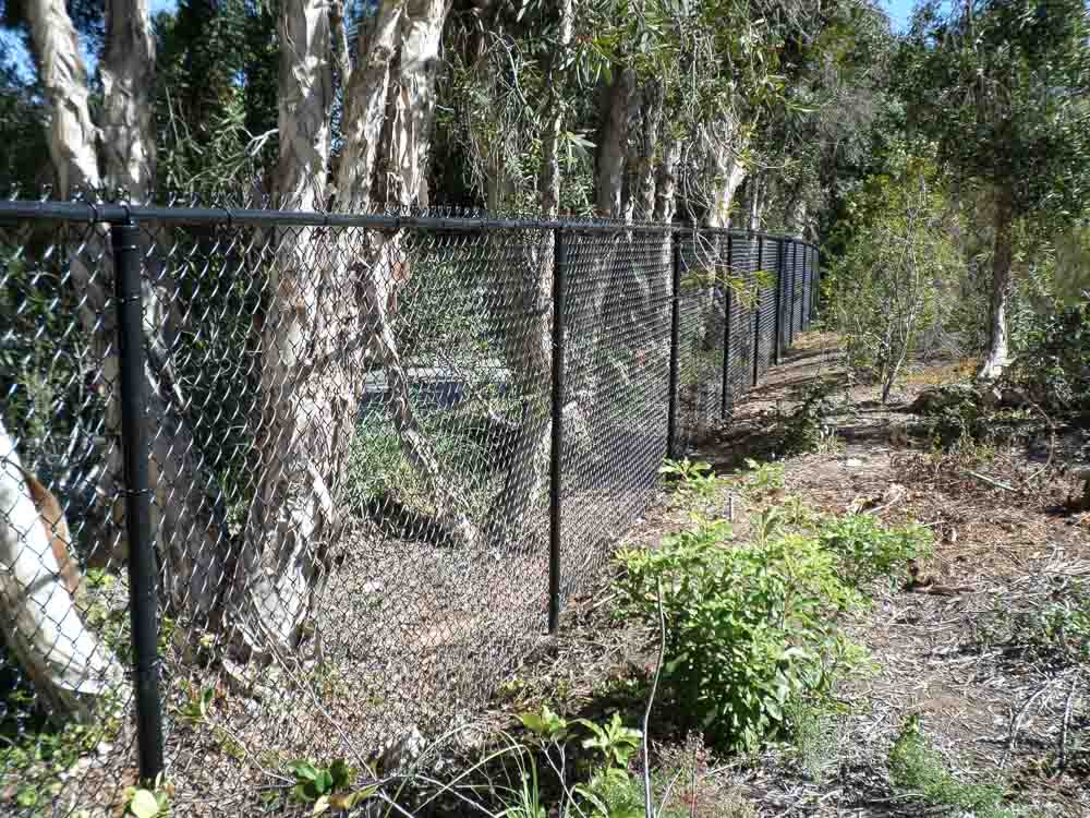 chain-link-fence-san-diego-5