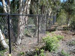 chain-link-fence-san-diego-5