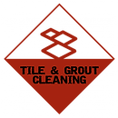 Tile and Grout cleaning with photo of tile