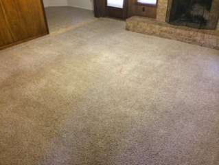 How Can You Get That New Carpet Feel Without Replacing It?