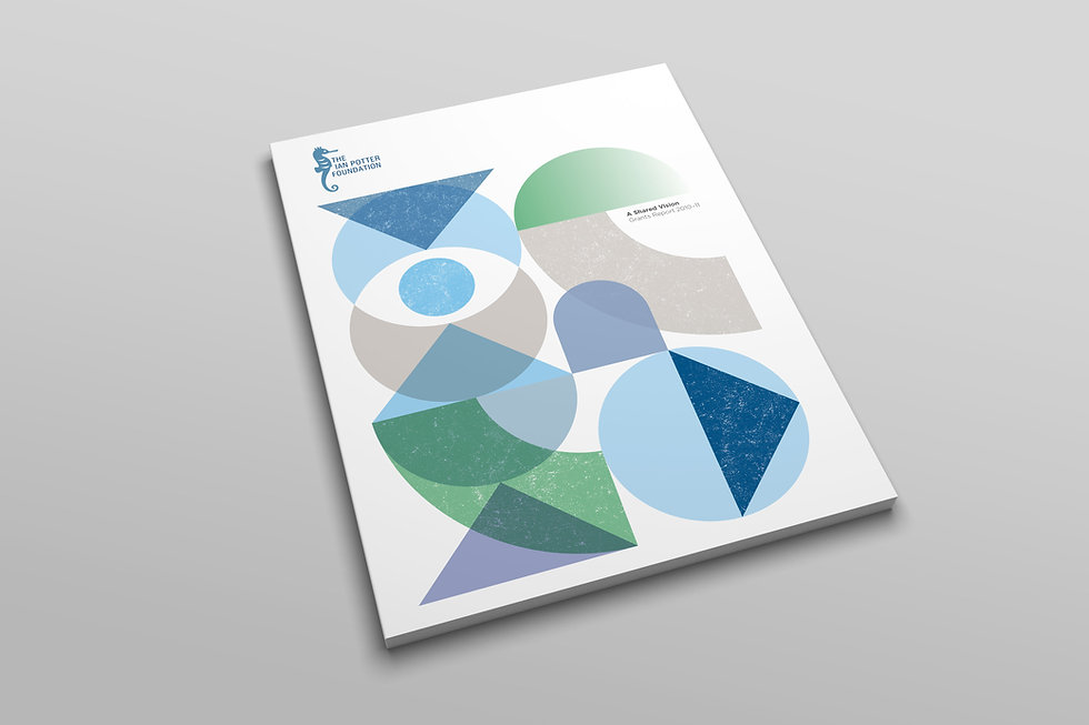 IPF-Annual-Report-COVER.jpg
