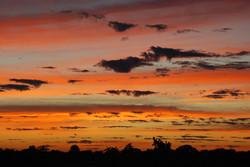 Sunrise in the Brazilian Pantanal