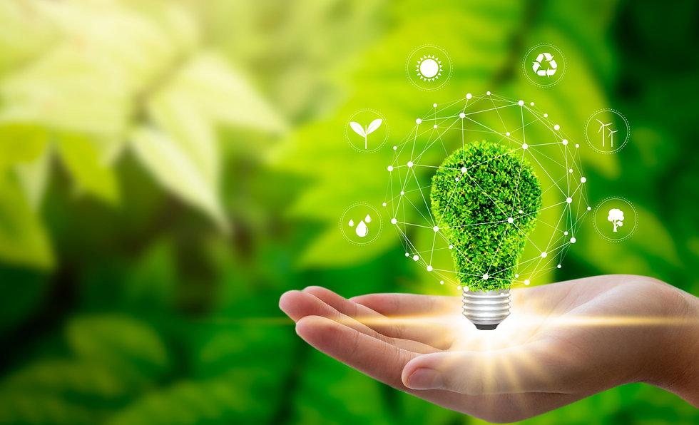 Hand holding light bulb against nature o