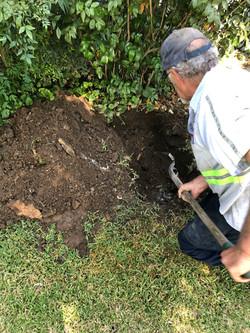 Ed Digging A Septic Tank