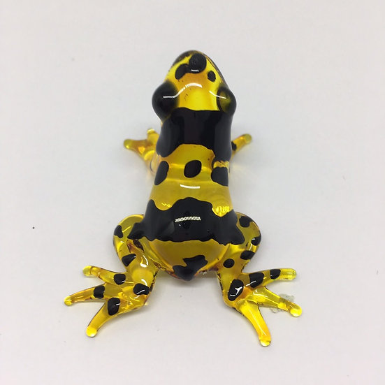 Poison Frog Glass Yellow Black Color