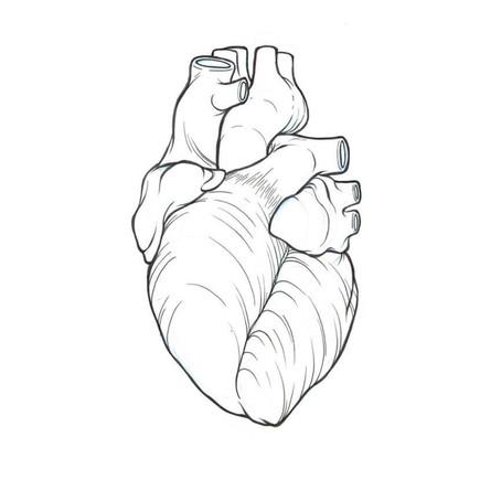 4 DISEASES OF THE HEART TO START HEALING TODAY ! - 4 MALADIES DU CŒUR & S'ENSOIGNER  AUJOUR