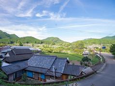 8647_yamazakura-17.jpg