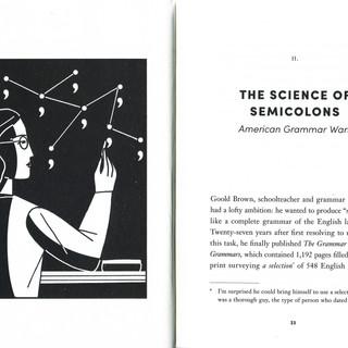 SEMICOLON 4 copy.jpg