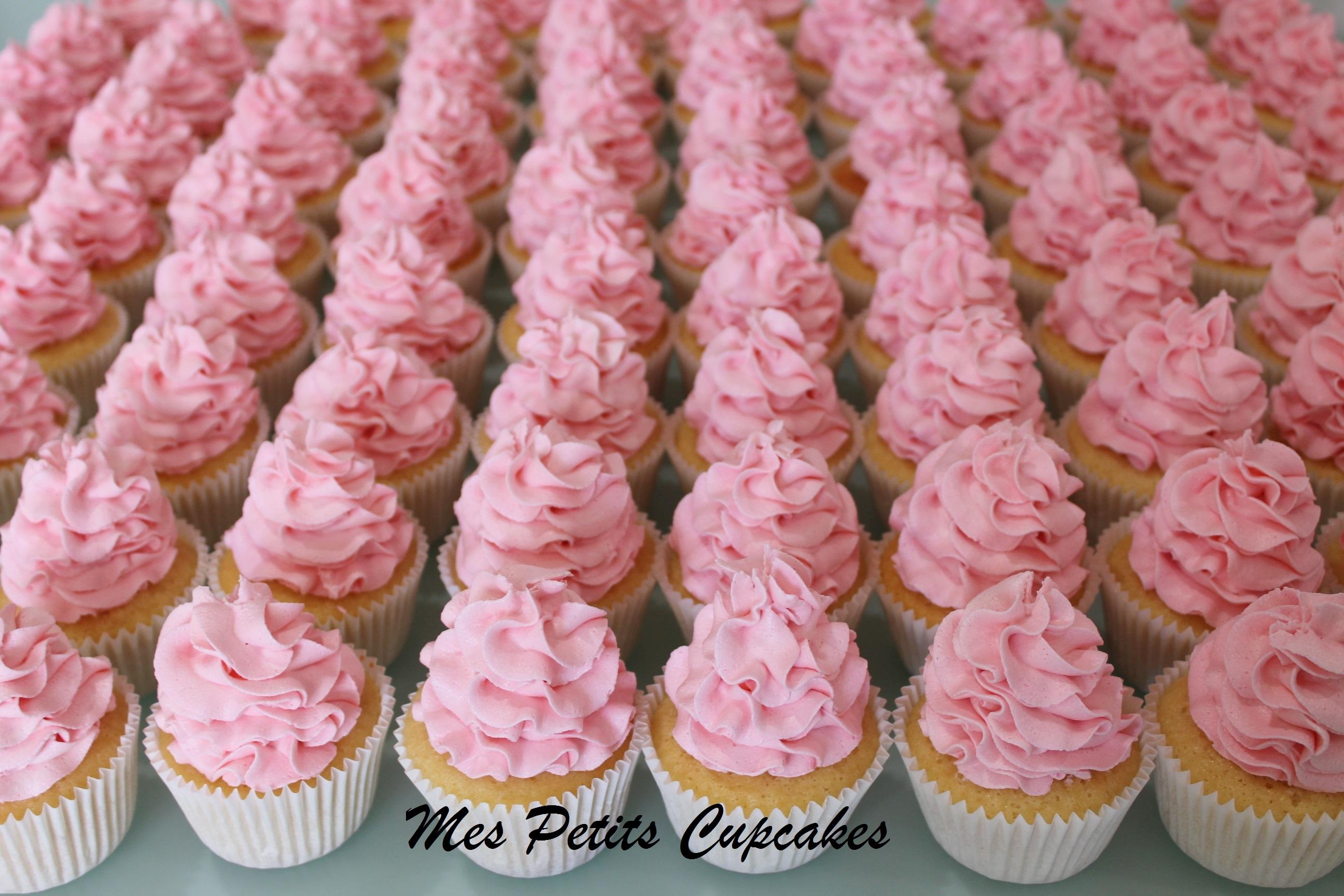 Cupcake - Pink and White Cupcakes