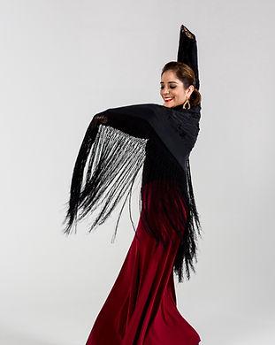 flamenco-14.jpg