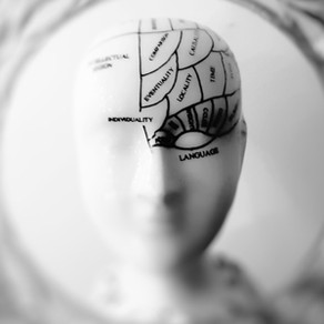 Brain Food – STP045