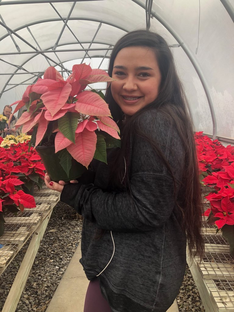 Senior Makenzie Young posing with pink poinsettias in the West High greenhouse.
