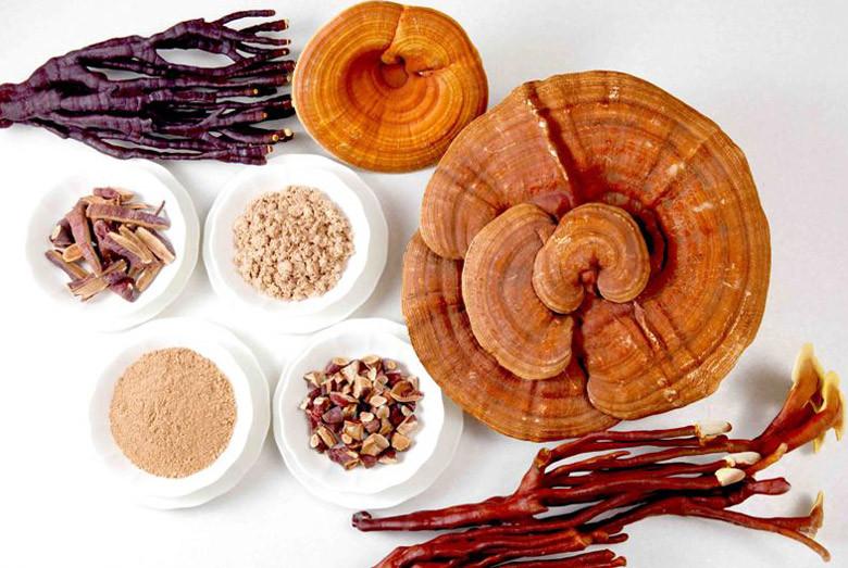 Verschiedene Arten von Reishi Pilzen
