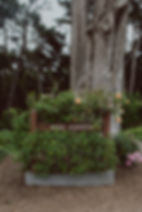 0058_LWCO_20200718_Brittany+Tariq.jpg