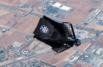 Wingsuiting Performance.jpg