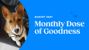 August's Monthly Dose of Goodness