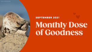 September's Monthly Dose of Goodness