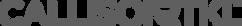 CRTKL Logo Gray - v02 - 512px.png