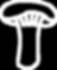 white mushroom.png