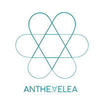 AntheAelea logo teal.jpg