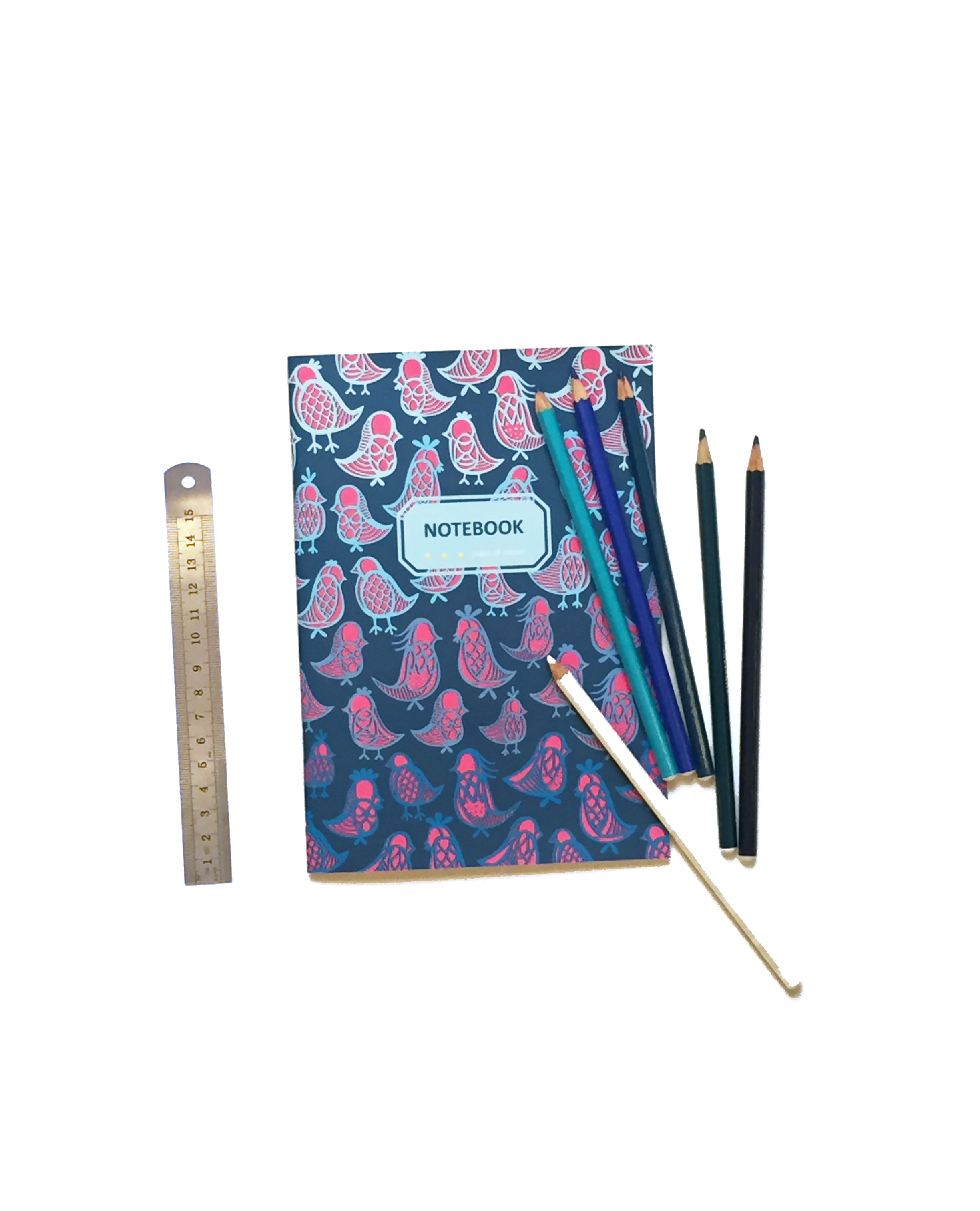 Notebook | Ornithology Blue on Blue