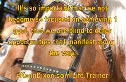 horses-1387439-1598x1062