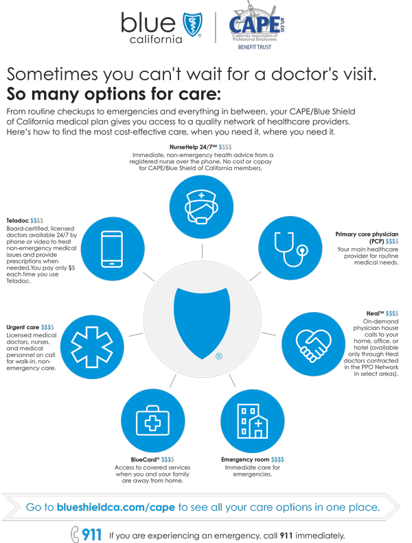 CAPE_AccessToCareFlyer_infographic.png
