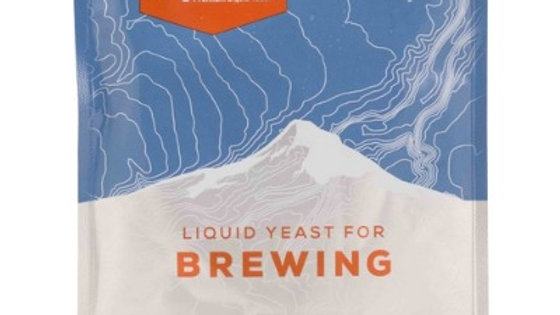 WY1010 American Wheat Ale Yeast