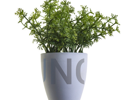 """""""Plant"""" can save your business money!"""