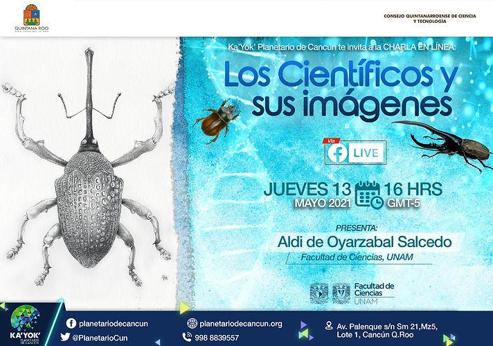 Ilustración científica Aldi de Oyarzabal